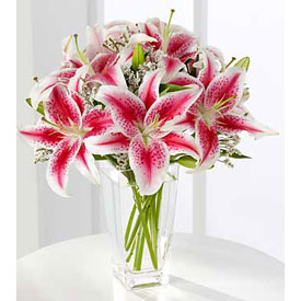 Oriental Lilies OFERTA! - CHARALLAVE